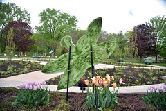 JIM_2866 (James J. Novotny) Tags: dragonflies sculptures sculpture d750 nikon rotarygarden rotarybotanicalgardens gardens garden gardenbotanical unlimitedphotos unlimiedphotos unlimited art artwork