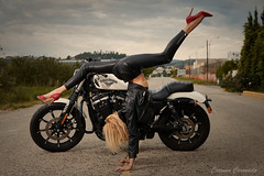 _DSC3366 (Carmen Coronado) Tags: nikond850 moto harley retrato retratoenexteriores
