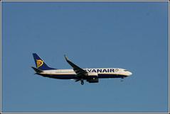 Ryanair EI-DLG. (PS_Bus_Driver) Tags: ryanair eidlg boeing737 egcc manchesterairport finalapproach