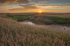 2018-07-SK-Grasslands-04 (gabbert_james) Tags: saskatchewan grasslands national park canada frenchman river sunrise dawn