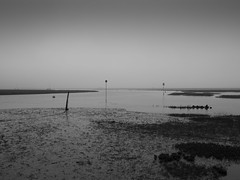 Blakeney Harbour May 2019 (Mark Gimson Photography) Tags: norfolk olympus penf 35mmf18 mist