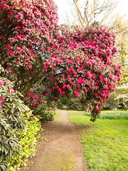 garlieston house of galloway-4121444 (E.........'s Diary) Tags: eddie ross olympus omd em5 mark ii spring 2019