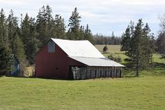 Old Barn- Bridgetown, PEI (Craigford) Tags: bridgetown pei canada old barn country rural