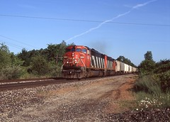 CN SD60F 5555 and sister are running westbound down the Flint sub, passing through the town of Morrice, Michigan in June of 2005. (Joseph Trepasso) Tags: railroad railfan morricemichigan 5555 sd60f canadiannational