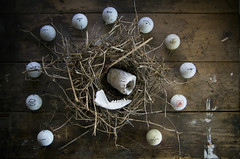 A Nest, Eleven Golf Balls,  One Half of A Jaw Bone, and a Gnawed on Bone (Burnt Umber) Tags: golf ball dimple golfball nest mocking bird stilllife pentax k5 smcpentaxfa77mmf18limited balls twig