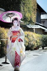 Maiko_20190409_121_9 (Maiko & Geiko) Tags: 20190409 myokenji temple kanohisa kyoto maiko 舞妓 妙顕寺 叶久 京都 叶家 kanoya ksumika