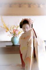 Maiko_20190409_121_22 (Maiko & Geiko) Tags: 20190409 myokenji temple kanohisa kyoto maiko 舞妓 妙顕寺 叶久 京都 叶家 kanoya ksumika