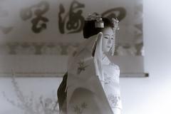 Maiko_20190409_121_24 (Maiko & Geiko) Tags: 20190409 myokenji temple kanohisa kyoto maiko 舞妓 妙顕寺 叶久 京都 叶家 kanoya ksumika