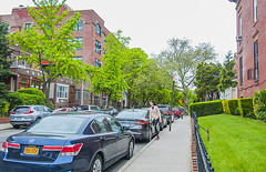 1381_1007FL (davidben33) Tags: brooklyn newyork crownheights streetphotos street photos trees bushes flowers flowering blooming blossoming irises architecture landscape cityscape houses buildings jewish people 718