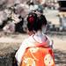 Maiko_20190409_109_31