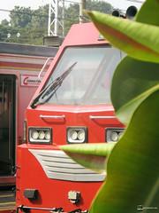 Made in indonesian (mreza981) Tags: indonesia indonesian cc 300 12 02 03 madiun industri kereta api inka semut merah lokomotif keretaapikita keretaapiinside stasiun bogor station sukabumi pangrango tambahan locomotive caterpilar