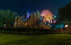 Fireworks over theMansion (mwjw) Tags: magickingdom disney disneyworld orlando florida night nightshot longexposure mwjw markwalter nikond850 rokinon12mm hauntedmansion hea happilyeverafter