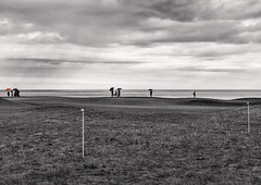Scottish Springtime_G5A2406_9527 (ronniefleming@btinternet.com) Tags: kingsbarns womensopen bw rain selectivecolouring 2017 visitscotland walkhighlands golfopen2017 sea clouds coast eastcoast ph31fy ronniefleming c rfp
