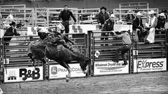 _PCR6969 (FunkyPepper) Tags: 16x9 bw clackandwhite cowboy horse rodeo
