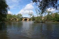 Mosel in Metz (okrakaro) Tags: mosel metz brücke fluss natur landschaft mai frühling 2019 frankreich bridge river nature landscape spring water france