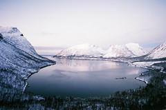 (Helena Costa.) Tags: norway senja bergsfjorden