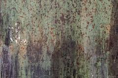 Roestbak (Pieter Musterd) Tags: roestbak roest pietermusterd musterd canon pmusterdziggonl nederland holland nl canon5dmarkii canon5d denhaag 'sgravenhage thehague lahaye