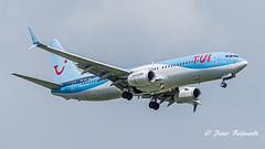 PH-TFA   Boeing 737-8K5(WL) - TUI Airlines Netherlands (Peter Beljaards) Tags: msn35100 cfm567 phtfa tui boeing737 landing ams eham passengerjet airliner aircraft airplane ferdinandfransen nikond5500 nikon70300mmf4556 aviationphotography haarlemmermeer final