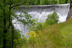 Summit Lake dam (rb0321) Tags: dam wildflower