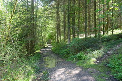 Hike to Vallée du Laudon (*_*) Tags: 2019 printemps spring afternoon may hiking mountain montagne nature randonnee walk marche europe france hautesavoie 74 annecy saintjorioz laudon bauges circuitdulaudon loop valléedulaudon savoie forest