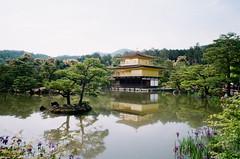 大阪京都3-7 (The_Can) Tags: 2019 may osaka kyoto can taiwan film gr1s 28mm c200 travel