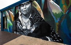 Albuquerque-2636 (David Leyse) Tags: streetart albuquerque