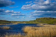 Washington wetland (Richard McGuire) Tags: us washington landscape sunset