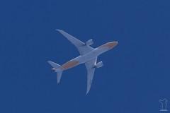 9V-OFK (PM's photography) Tags: aviation avporn avgeek airline airliner plane jet sky travel spotting rnav rnavspotterspl contrail chemtrail airplane flying boeing dreamliner b787 b7878 b788 9vofk scoot txl eddt sin wsss tgw tg tgw735 tg735