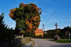 2012-10-02 Loryniec (132) (aknad0) Tags: polska loryniec krajobraz wieś budynki drzewa