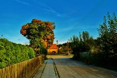 2012-10-02 Loryniec (131) (aknad0) Tags: polska loryniec krajobraz wieś budynki drzewa