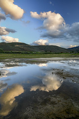 Cloud Reflections (Aaron_Smith_Wolfe_Photography) Tags: sierra nevada washoe valley wetlands d850 nikon 20mm reflection water clouds sunset