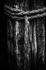Hold on...... (rienschrier) Tags: contrast paal highcontrast blackandwhite zwartwit touw rope