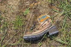 Alguien perdió la bota (lebeauserge.es) Tags: cerveradebuitrago madrid españa naturaleza campo atazar bota calzado