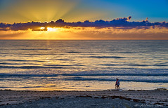 A Long Walk on the Beach (Alfredo Rafael) Tags: coastal stroll morning sun atlantic ocean sony wet sunrays crepuscular sand surf seashore colorful sunrise melbourne florida beachwalk