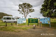 DOC Camp, Tapotupotu Bay, Cape Reinga (flyingkiwigirl) Tags: anglican aupouripeninsula bandedrail bird camp capereinga church doc emu farnorth fernbird kaitaia maori ratana reefheron stjosephs tapotupotubay tekao tepaki walk