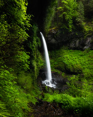 "Silver Falls State Park (Catherine ""Cat"" Rose) Tags: 2019 may silverfallsstatepark waterfall"