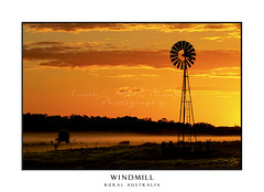Silhouette of windmill on farmland against orange yellow sky (sugarbellaleah) Tags: windmill farm sunrise agriculture fog silhouette clouds sky background rural country countryside grass field australia outback nature landscape scenery picturesque outdoors copyspace farming industry morning misty