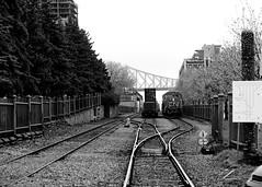 Train for a rainy day (Montréal) (j.lowell.w) Tags: train trains bridge montreal mtl cityscape rainy rain traintracks blackandwhite bw