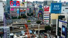 DSC_0091 (Adrian De Lisle) Tags: asia city cityscape crosswalk crowd japan people shibuya shibuyacrossing shibuyahikarie tokyo train trainstation shibuyaku tōkyōto