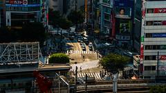 DSC_0180 (Adrian De Lisle) Tags: asia city cityscape crosswalk crowd japan people shibuya shibuyacrossing shibuyahikarie sunset tokyo train trainstation shibuyaku tōkyōto