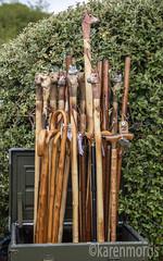 #113 Walking Stick (119 Pictures In 2019) (kazmorris) Tags: 119picturesin2019 walking sticks wood
