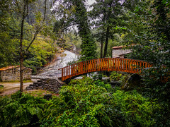 PUENTE RUSTICO (bacasr) Tags: puente rocas hicking viajando landscape bridge bosque nature water footbridge caminodesantiago caminoportugués walkway rainy caminando rocks agua travelling pasarela paisaje lluvioso thewayofsaintjames river forest mills molinos naturaleza río spain galicia españa caldasderei