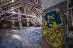 DSC_1374 (The Archives of Decay) Tags: urbanexploring urbexphotography udssr lostplaces abandonedplaces abandoned verlassen abandonedmilitarybuilding sovietunion sowjetunion gssdwgt gssd kaserne sovietunionabandoned