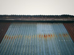 Rusted zinc roof (naatoy) Tags: roof rust zinc old iron background wall rusty sheet detail vintage texture brown corrugated metal material pattern metallic surface grunge architecture steel construction industrial abstract tin color plate design industry structure exterior galvanized white wallpaper fence retro silver urban panel weathered aluminum vertical roofing textured striped row gray garage grey