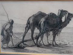 Dromadaires attelés (bpmm) Tags: algérie gustaveguillaumet lapiscine nord roubaix art dessin expo exposition
