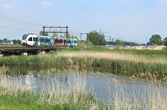 Arriva 525 @ Zwolle (Sicco Dierdorp) Tags: arriva blauwnet vechtdallijnen emmerlijn gtw spurt serie10500 serie500 525 wildlands reclamestel totaalreclame dalfsen herfte zwolle brug wetering
