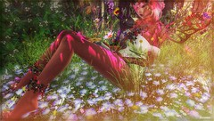 ╰☆╮Fairy Berries╰☆╮ (яσχααηє♛MISS V♛ FRANCE 2018) Tags: cjcreations irrisistible swank lepoppycock avatar artistic art events roxaanefyanucci topmodel poses photographer posemaker photography models modeling maitreya lesclairsdelunedesecondlife lesclairsdelunederoxaane girl fashion flickr france fashiontrend fashionable fashionindustry firestorm fashionista fashionstyle fantasy designers secondlife sl slfashionblogger shopping styling style woman virtual blog blogger blogging bloggers bento beauty bodymesh