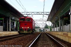 DE520-01_Rescaldina_04ago10 (treni_e_dintorni) Tags: rescaldina de520 de5201 ferrovienordmilano thomasradice saronnonovara diesel train locomotore