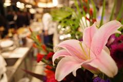 Kichen Sacrée Fleur Nihonbashi 02 (HAMACHI!) Tags: tokyo 2019 japan food foodporn foodie foodmacro サクレフルール日本橋 sacréefleur bistro