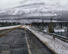 The Icefields Parkway at the Saskatchewan River Crossing, Banff National Park, Alberta Canada (PhotosToArtByMike) Tags: saskatchewanrivercrossing saskatchewanriver banffnationalpark icefieldsparkway canadianrockies banff albertacanada mountain mountains alberta road highway parkway